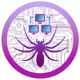 Spider (SPDR)