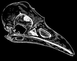 RavenDark (XRD)